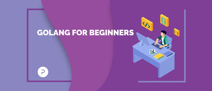 Golang for Beginners: A Simple Guide to Understanding BasicGo