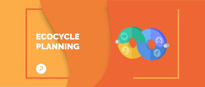 Cómo renovarse en la organización utilizando ecocycle planning