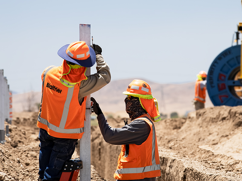 Interns working in the field
