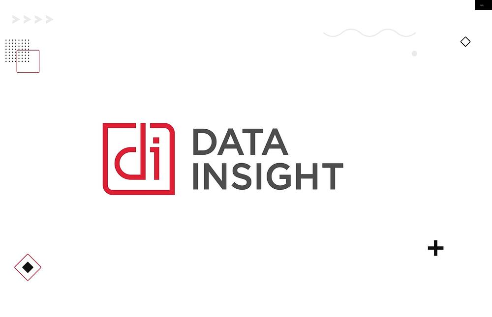 Data Insight - who we are