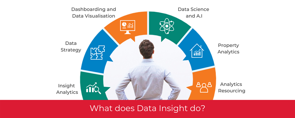 What does Data Insight do?