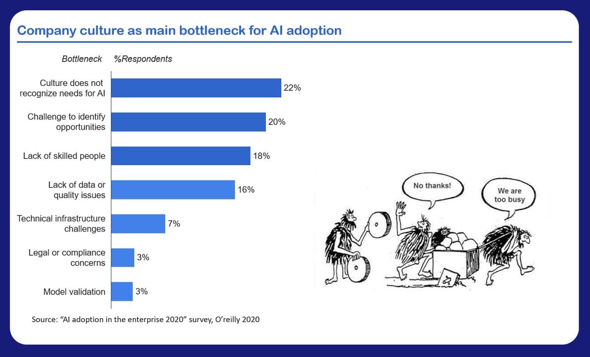 AI adoption bottleneck-1