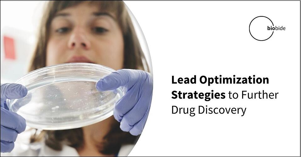 Lead Optimization Strategies to Further Drug Discovery