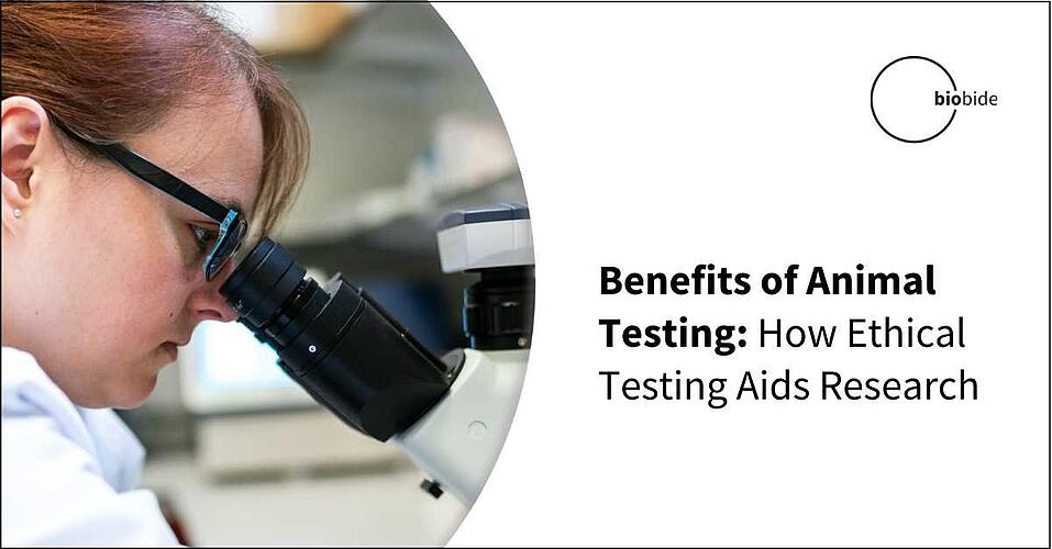Benefits of Animal Testing: How Ethical Testing Aids Research