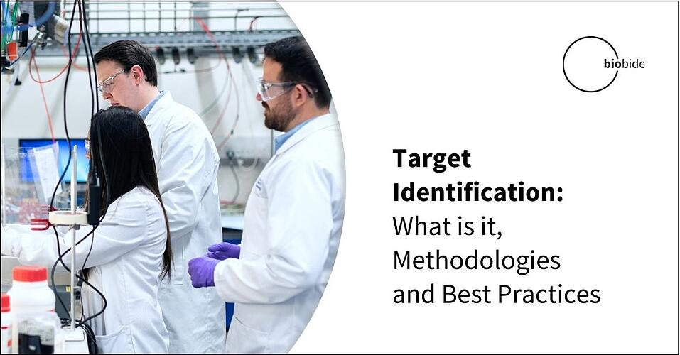 Target Identification: What is it, Methodologies and Best Practices
