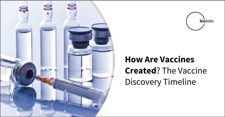How Are Vaccines Created? The Vaccine Discovery Timeline