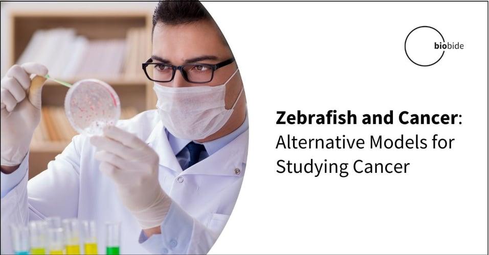 Zebrafish and Cancer: Alternative Models for Studying Cancer