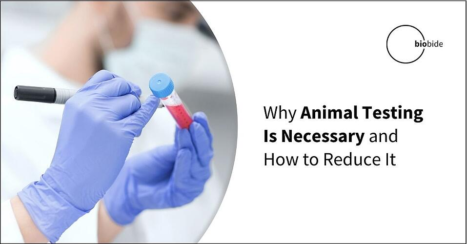 Why Animal Testing Is Necessary and How to Reduce It