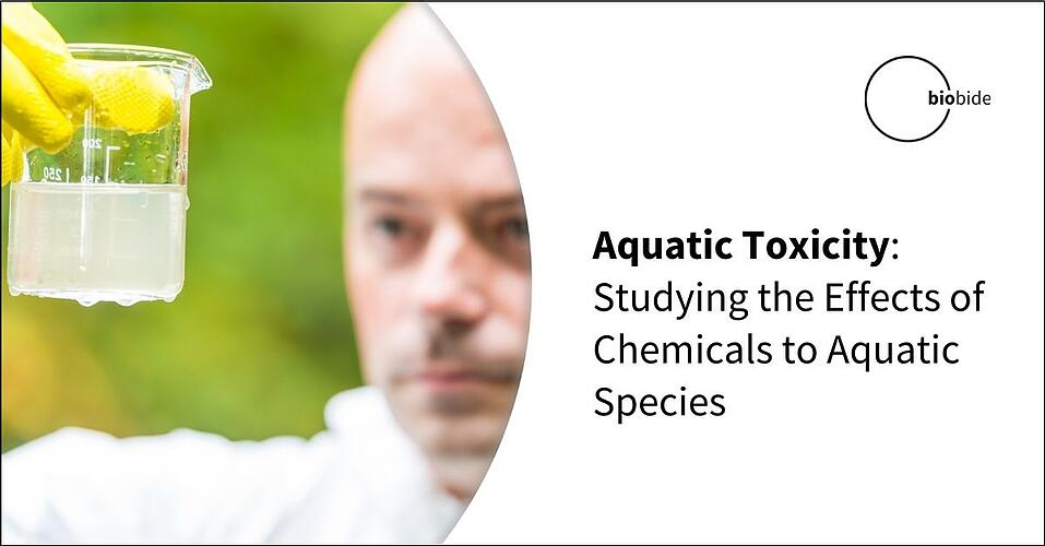 Aquatic Toxicity: Studying the Effects of Chemicals on Aquatic Species