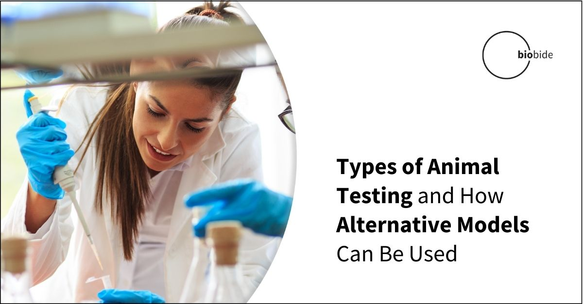 Types of Animal Testing and How Alternative Models Can Be Used
