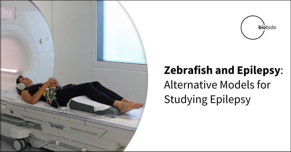 Zebrafish and Epilepsy: Alternative Models for Studying Epilepsy