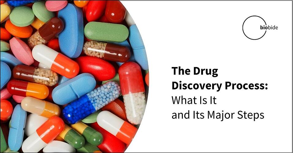 The Drug Discovery Process: What Is It and Its Major Steps
