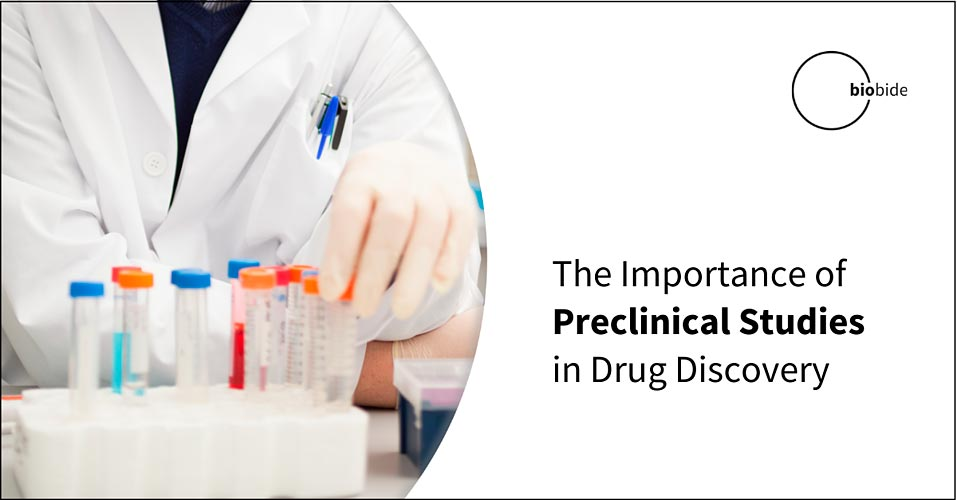 The Importance of Preclinical Studies in Drug Discovery
