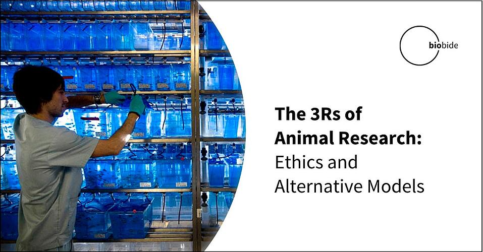 The 3Rs of Animal Research: Ethics and Alternative Models