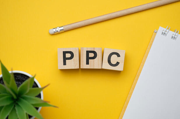 Beginners Guide to Pay Per Click (PPC) Campaigns