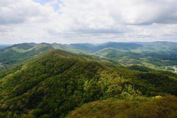 Bluegrass Goes Green: Sustainability Efforts Underway