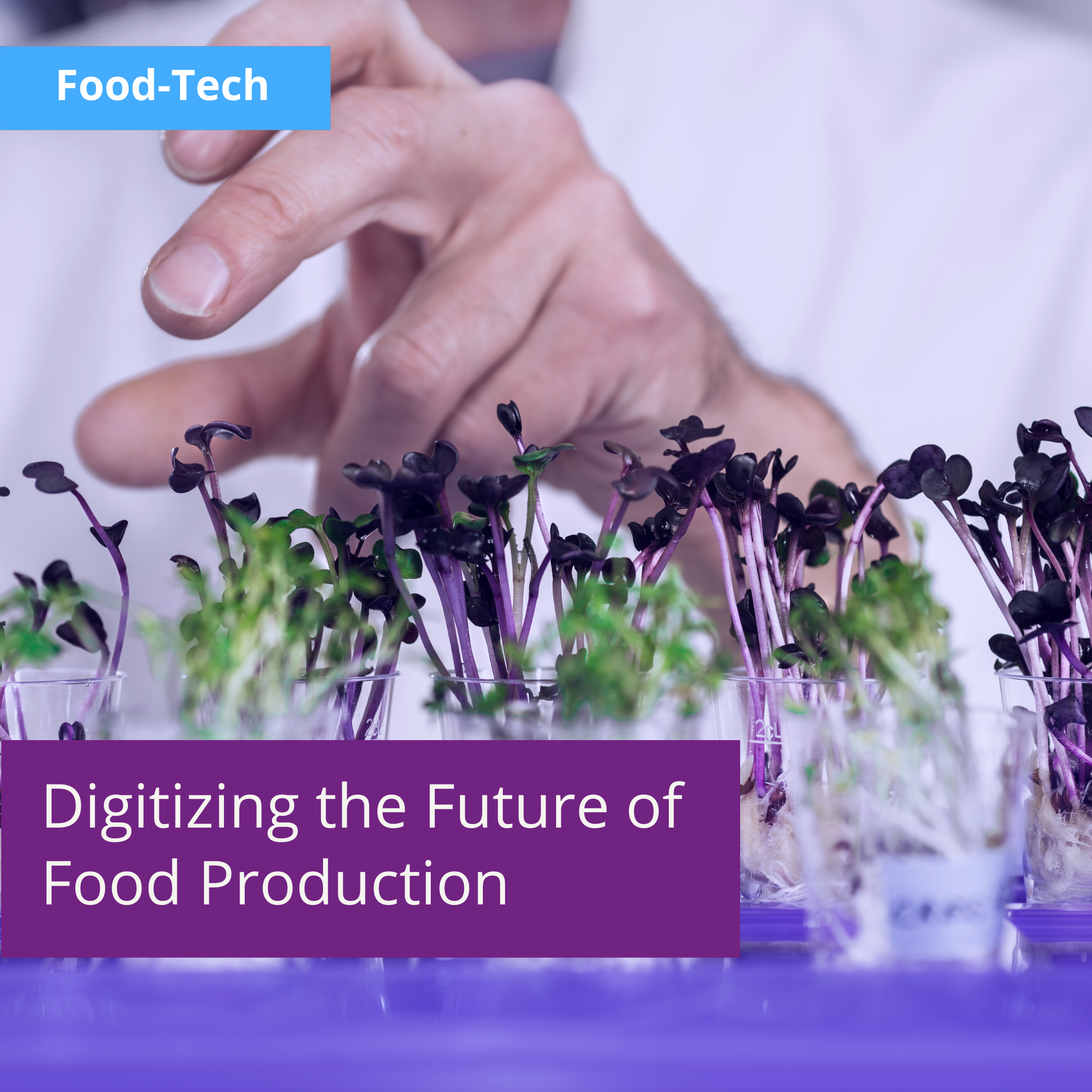 Labguru Electronic Lab Notebook for Food-Tech — Digitizing the Future of Food Production