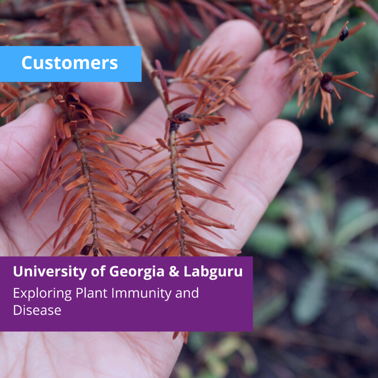 Exploring Plant Disease and Immunity: Research Laboratory Management at the University of Georgia
