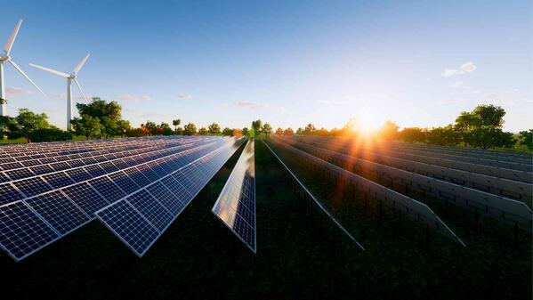Government contract bidders required to make net-zero carbon pledge