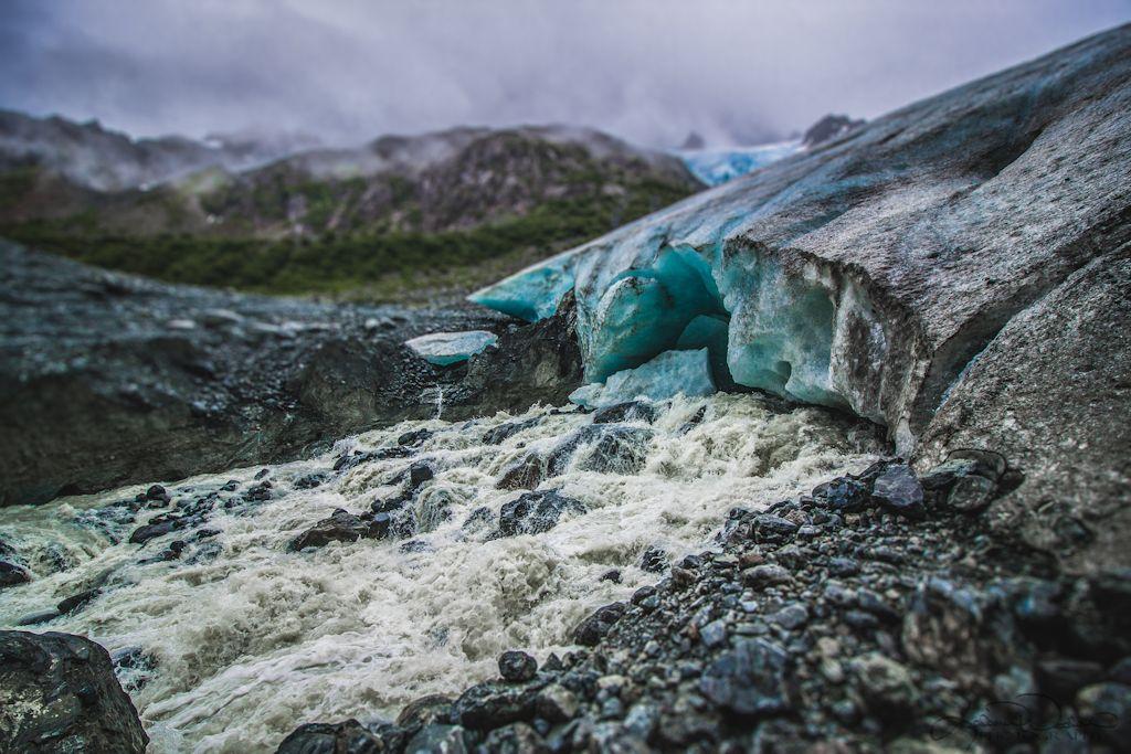 Explore Glaciers Seward Alaska