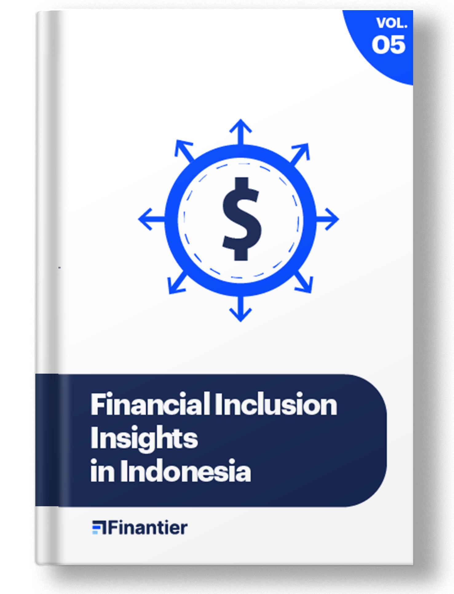 Financial Inclusion Insights in Indonesia
