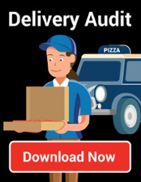 Delivery Audit: download now