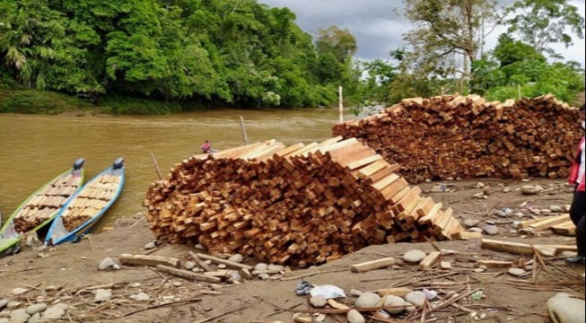 Addressing the Threat of Uncontrolled Balsa Harvesting in the Sacred Headwaters Region