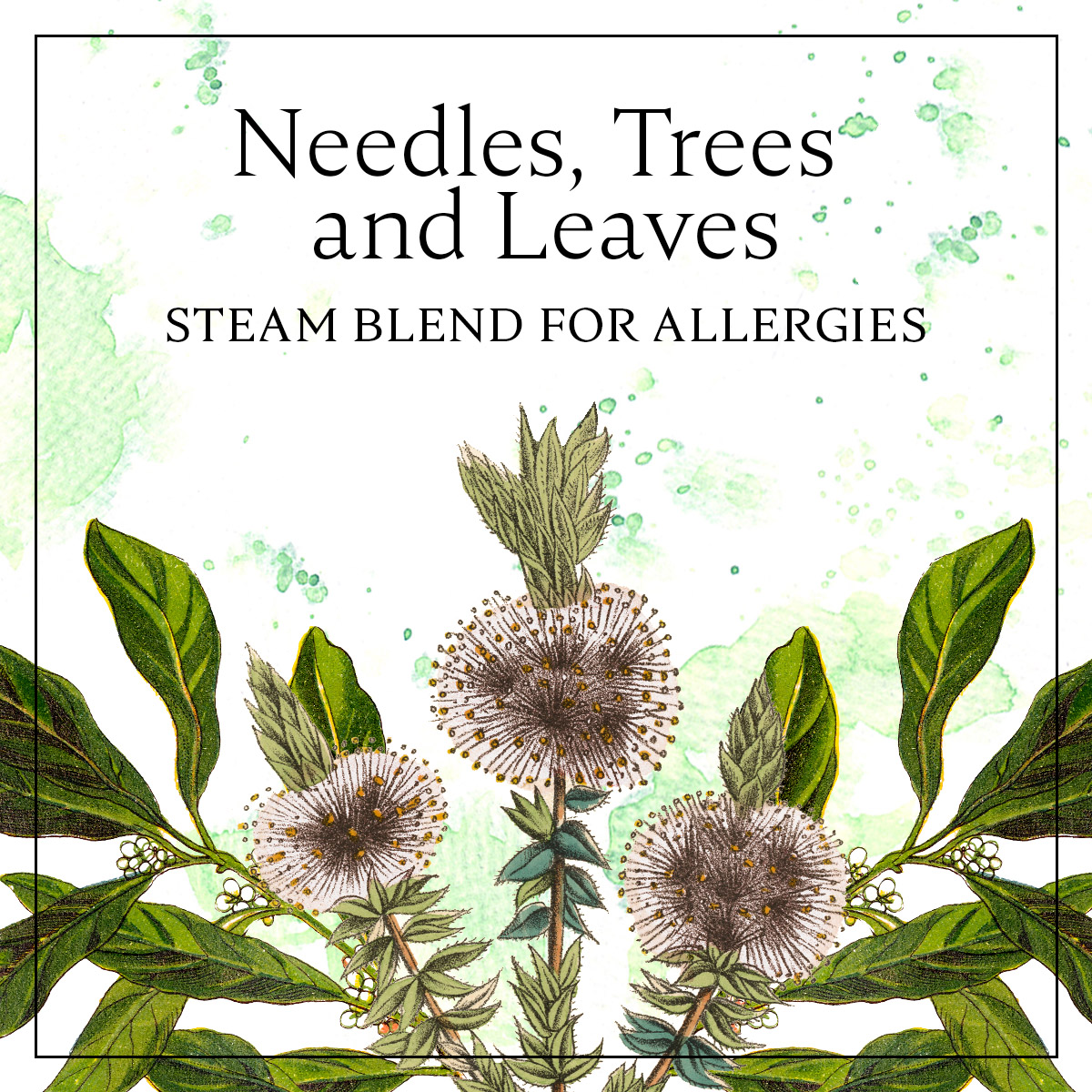 Steam with Essential Oils for Allergies