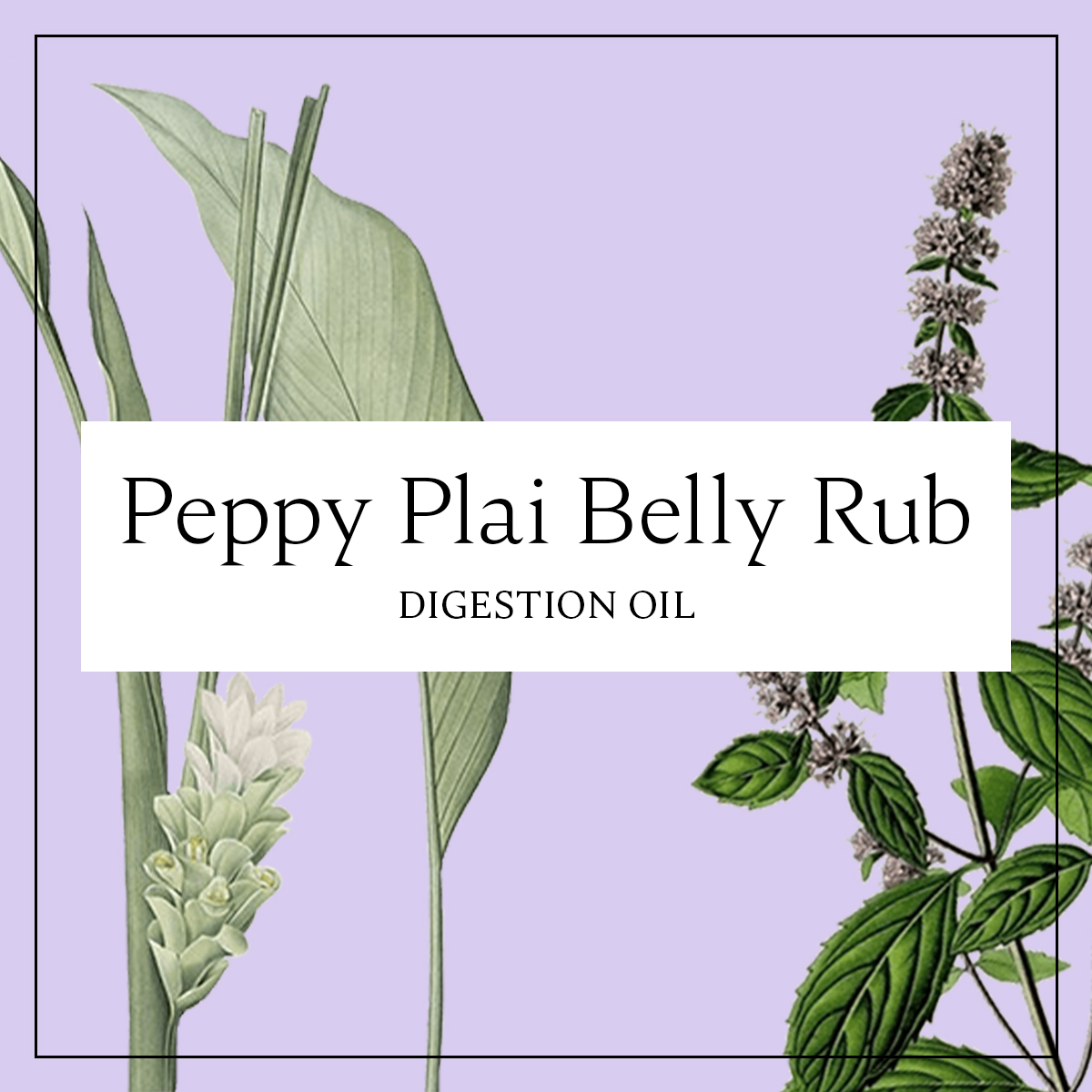 Peppy Plai Belly Rub: Essential Oils to Support Digestion