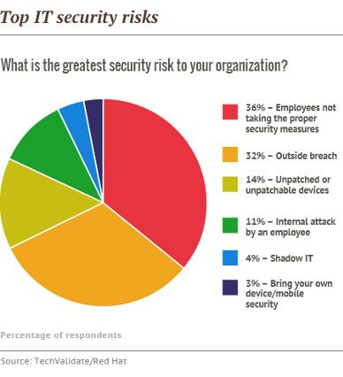 Top IT security risks