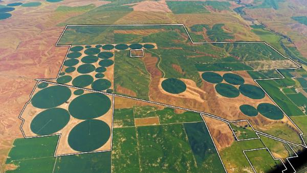 Aerial view of farmland in Walla Walla, Washington